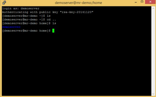 compute engine instance and putty SSH | successful login